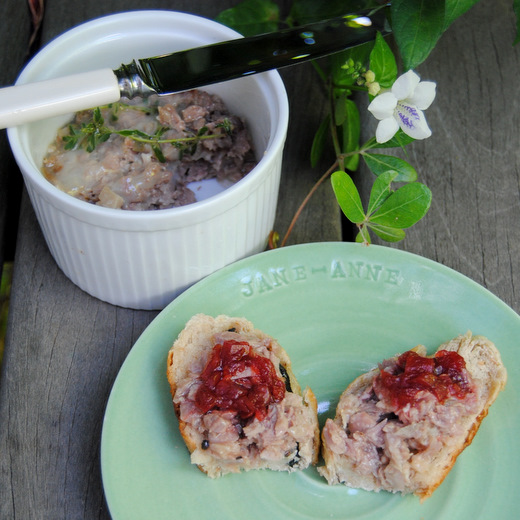 Easy Duck Rillettes