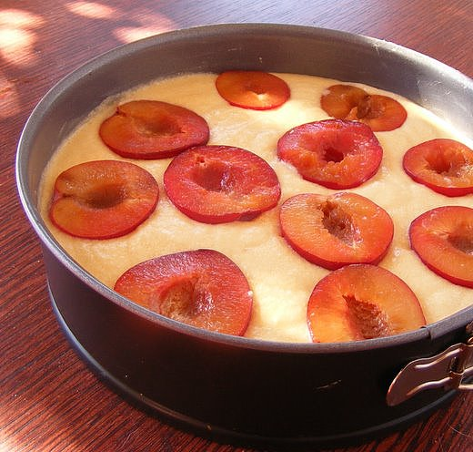 Fresh-Plum and Almond Cake
